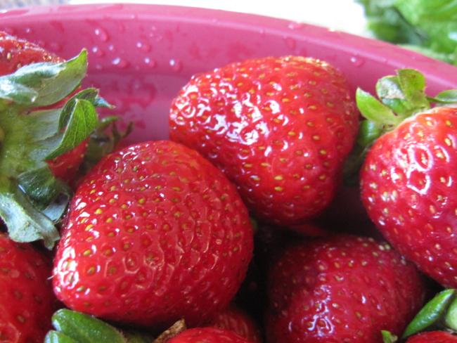 strawberry salasa