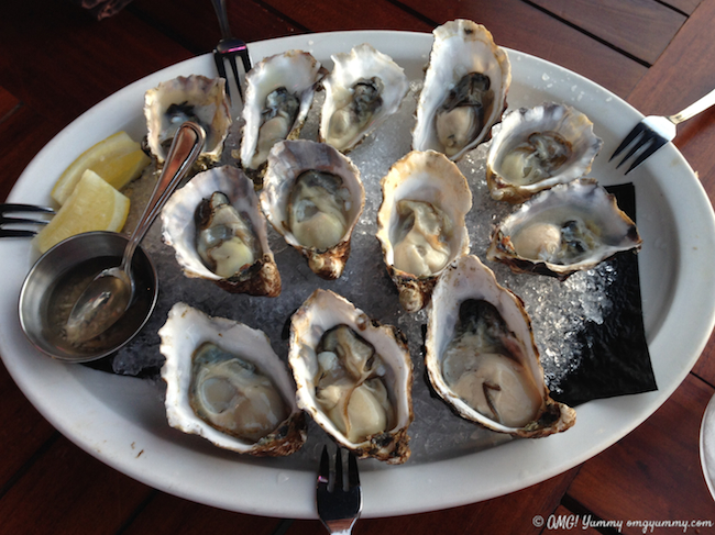 oysters cropped
