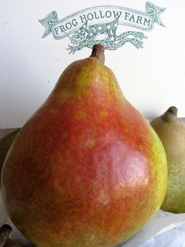 close up of reddish pear in frog hollow farm box