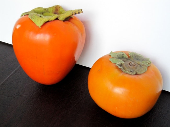 hachiya and fuyu persimmon side by side