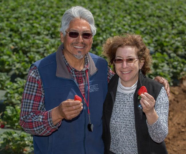 A visit to a Watsonville Strawberry Farm with the California Strawberry Commission