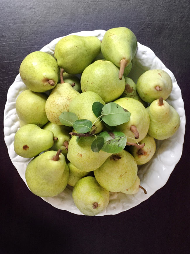 pears in white bowl