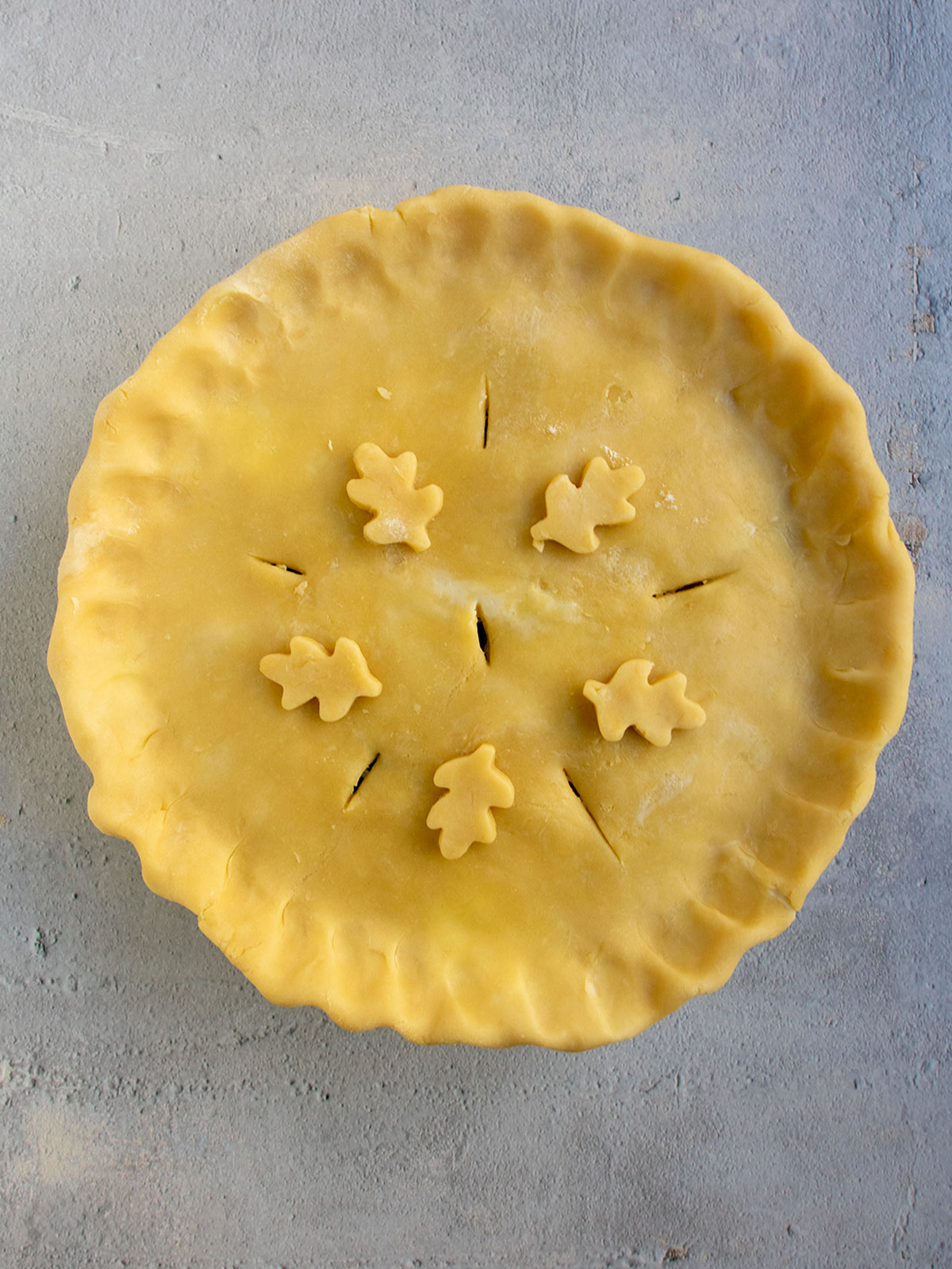 turkey pot pie covered with second crust and slits made with leafy crust decorations added